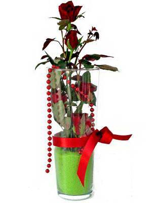 Aydın incir çiçek online çiçek gönderme sipariş  Cam yada mika içerisinde 9 adet kirmizi gül - sevdiklerinize özel