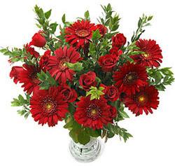 5 adet kirmizi gül 5 adet gerbera aranjmani  Aydın incir çiçek hediye çiçek yolla