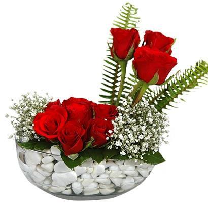 cam içerisinde 9 adet kirmizi gül  Aydın incir çiçek çiçek siparişi vermek