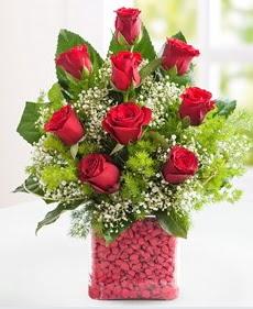 Cam içerisinde 9 adet kırmızı gül  Aydın incir çiçek internetten çiçek satışı