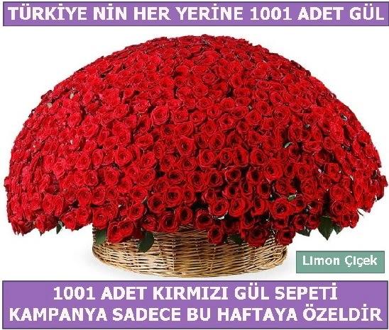 1001 Adet kırmızı gül Bu haftaya özel  Aydın incir çiçek incir çiçek İnternetten çiçek siparişi