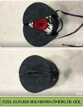 Solmayan ömürlük gül şoklanmış gül  Aydın incir çiçek çiçek gönderme