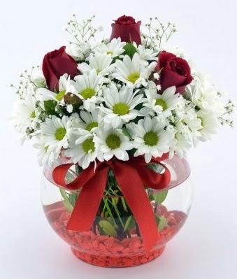 Fanusta 3 Gül ve Papatya  Aydın incir çiçek internetten çiçek satışı