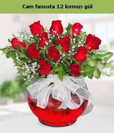 Cam içerisinde 12 adet kırmızı gül  Aydın incir çiçek internetten çiçek satışı