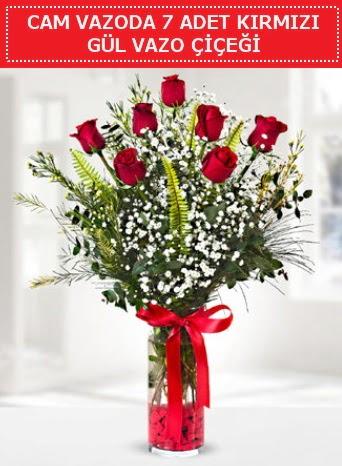 Cam vazoda 7 adet kırmızı gül çiçeği  Aydın incir çiçek çiçek gönderme sitemiz güvenlidir
