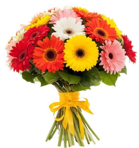Gerbera demeti buketi  Aydın incir çiçek çiçek satışı