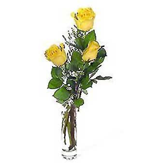 Aydın incir çiçek internetten çiçek siparişi  3 adet kalite cam yada mika vazo gül