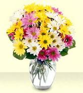 Aydın incir çiçek internetten çiçek siparişi  mevsim çiçekleri mika yada cam vazo