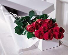 Aydın incir çiçek çiçek satışı  özel kutuda 12 adet gül