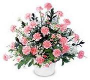 Aydın incir çiçek çiçek siparişi vermek  Karanfillerden özel aranjman sepet içinde