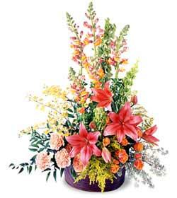 Aydın incir çiçek çiçekçiler  Mevsim çiçekleri sepeti