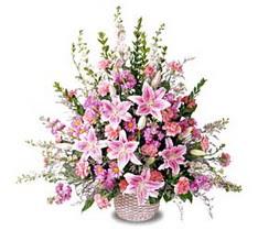 Aydın incir çiçek çiçek siparişi sitesi  Tanzim mevsim çiçeklerinden çiçek modeli