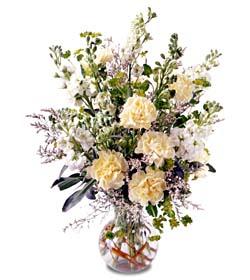 Aydın incir çiçek incir çiçek İnternetten çiçek siparişi  cam yada mika vazoda sebboy karanfil özel