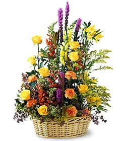 Aydın incir çiçek çiçekçiler  mevsim çiçekleri sepeti özel