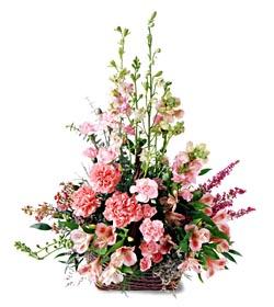 Aydın incir çiçek ucuz çiçek gönder  mevsim çiçeklerinden özel