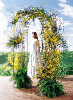 Aydın incir çiçek internetten çiçek satışı  güller ve mevsim çiçegi