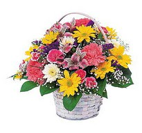Aydın incir çiçek çiçek , çiçekçi , çiçekçilik  mevsim çiçekleri sepeti özel