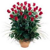 Aydın incir çiçek uluslararası çiçek gönderme  10 adet kirmizi gül cam yada mika vazo