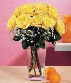 Aydın incir çiçek internetten çiçek satışı  9 adet sari güllerden cam yada mika vazo