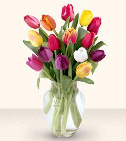 Aydın incir çiçek çiçekçiler  13 adet cam yada mika vazoda laleler