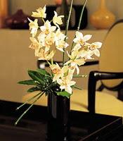 Aydın incir çiçek çiçekçiler  cam yada mika vazo içerisinde dal orkide