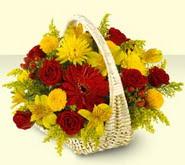Aydın incir çiçek 14 şubat sevgililer günü çiçek  sepette mevsim çiçekleri