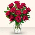 Aydın incir çiçek çiçek yolla  10 adet gül cam yada mika vazo da
