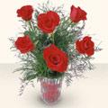 Aydın incir çiçek cicekciler , cicek siparisi  cam yada mika vazoda 6 adet kirmizi gül