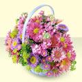 Aydın incir çiçek yurtiçi ve yurtdışı çiçek siparişi  bir sepet dolusu kir çiçegi  Aydın incir çiçek çiçek gönderme sitemiz güvenlidir