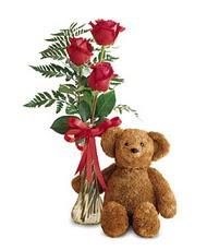 oyuncak ve güller tanzim   Aydın incir çiçek çiçekçi telefonları
