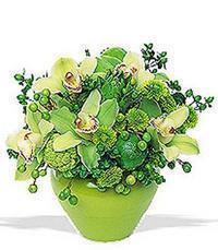 cam yada mika vazoda 5 adet orkide   Aydın incir çiçek online çiçekçi , çiçek siparişi