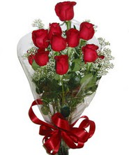 9 adet kaliteli kirmizi gül   Aydın incir çiçek online çiçekçi , çiçek siparişi