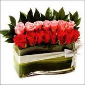 12 adet kirmizi gül ve cam   Aydın incir çiçek çiçekçi mağazası
