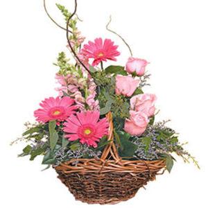 küçük ama görsel aranjman   Aydın incir çiçek çiçek gönderme sitemiz güvenlidir