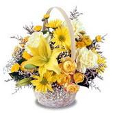 sadece sari çiçek sepeti   Aydın incir çiçek çiçek gönderme sitemiz güvenlidir