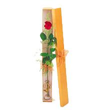 ince  kutuda  1  gül   Aydın incir çiçek çiçek yolla