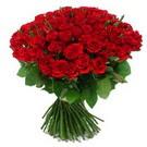 101 adet kirmizi gül sade  Aydın incir çiçek çiçek yolla