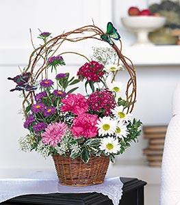 Aydın incir çiçek cicekciler , cicek siparisi  sepet içerisinde karanfil gerbera ve kir çiçekleri