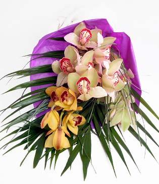 Aydın incir çiçek cicekciler , cicek siparisi  1 adet dal orkide buket halinde sunulmakta