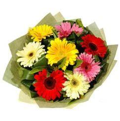 9 adet karisik gerbera demeti  Aydın incir çiçek çiçek mağazası , çiçekçi adresleri
