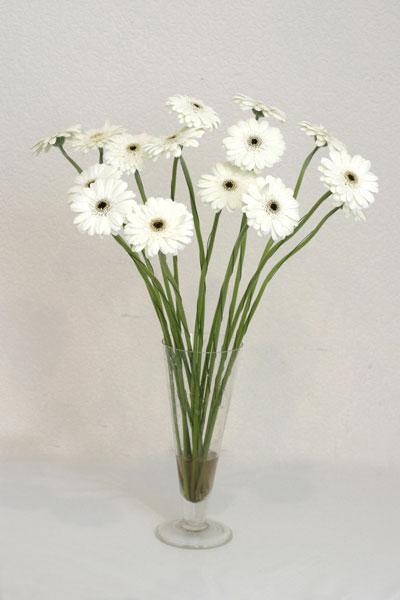 Aydın incir çiçek çiçek mağazası , çiçekçi adresleri  cam vazo içerisinde 17 adet sade gerbera