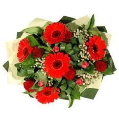 Aydın incir çiçek ucuz çiçek gönder   5 adet kirmizi gül 5 adet gerbera demeti