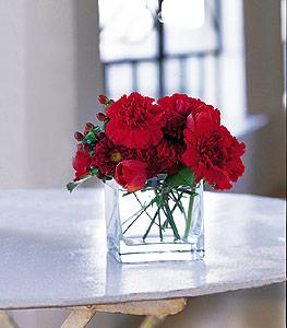 Aydın incir çiçek ucuz çiçek gönder  kirmizinin sihri cam içinde görsel sade çiçekler