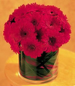Aydın incir çiçek ucuz çiçek gönder  23 adet gerbera çiçegi sade ve sik cam içerisinde