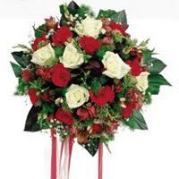 Aydın incir çiçek ucuz çiçek gönder  6 adet kirmizi 6 adet beyaz ve kir çiçekleri buket