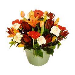 mevsim çiçeklerinden karma aranjman  Aydın incir çiçek çiçek yolla , çiçek gönder , çiçekçi