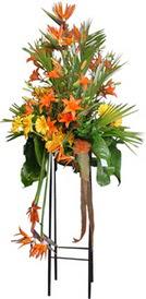 Aydın incir çiçek çiçek siparişi sitesi  perförje tanzimi dügün nikah ve açilislara