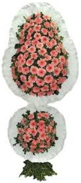 Aydın incir çiçek online çiçek gönderme sipariş  sepet dügün nikah ve açilislara