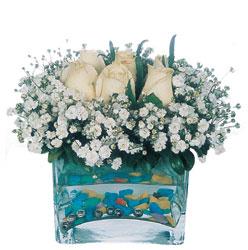 Aydın incir çiçek çiçekçi mağazası  mika yada cam içerisinde 7 adet beyaz gül