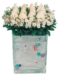 Aydın incir çiçek çiçekçi mağazası  7 adet beyaz gül cam yada mika vazo tanzim